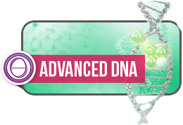 theta healing dna advanced berlin