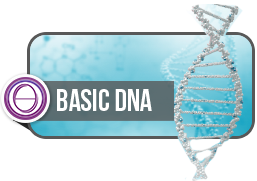 basic dna theta healing berlin seminar